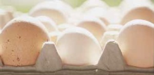 There is demand across many institutions in Vermont for local eggs.