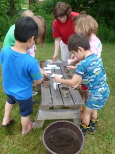 Preschool students fill their pots with dirt.