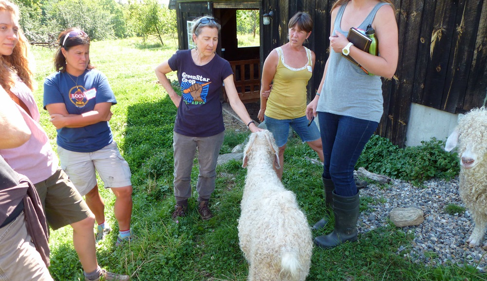 On-Farm Workshop Series