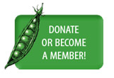 donate-or-become-member